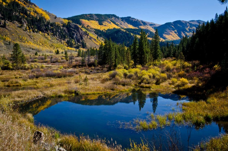 Autumn in Camp Hale looking north up the East Fork of the Eagle River toward the Continental Divide.