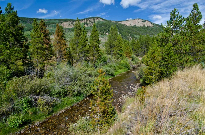 The East Fork of the Eagle River in the Pando Valley is included as the proposed Camp Hale National Historic Landscape in the Wilderness Bill called the CORE Act introduced by US Congressman Joe Neguse and US Senators Michael Bennet and John Hickenlooper.
