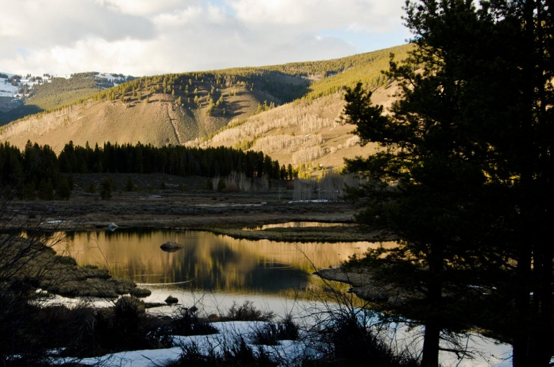 Prior to the construction of Camp Hale, the Pando Valley was a wetland habitat that the National Forest Foundation plans to restore through riparian restoration.