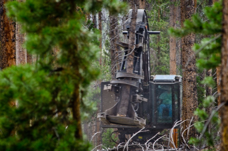 Forest removal is often carried out by small logging crews including this one where a single machine operator clear cuts a massive swath of lodgepole pine trees in Northern Colorado.