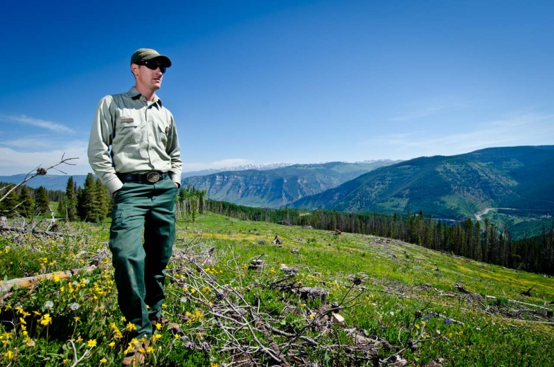 Forest ranger looking out over the clear cut logging operation he managed in Northern Colorado.