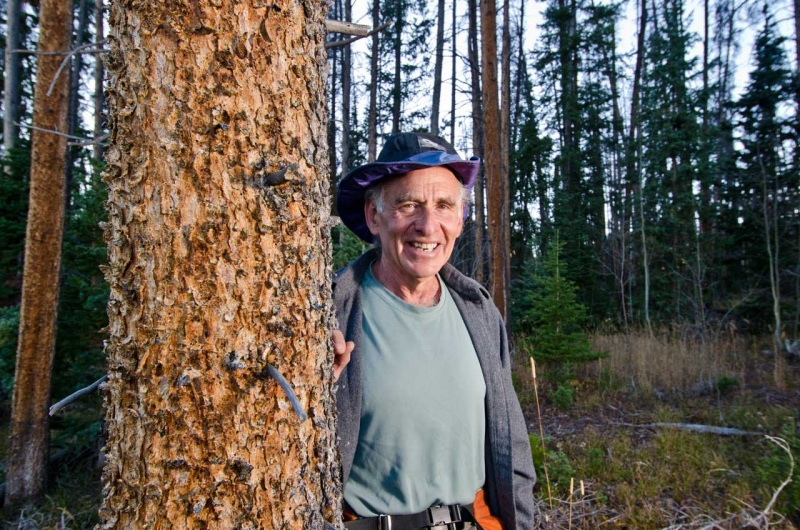 Environmental activist Howard Brown stands next to a lodgepole pine tree in Summit County Colorado.