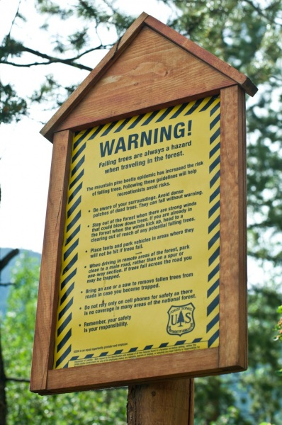 US Forest Service sign warns forest visitors to beware of falling trees due to the Mountain Pine Beetle infestation.