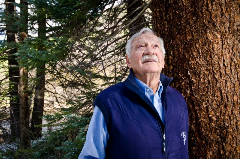 Naturalist and environmental activist Tom Gaylord looks up at the lodgepole pine forest canopy.