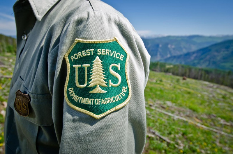 US Forest Service patch on the arm of a forest ranger in Colorado.