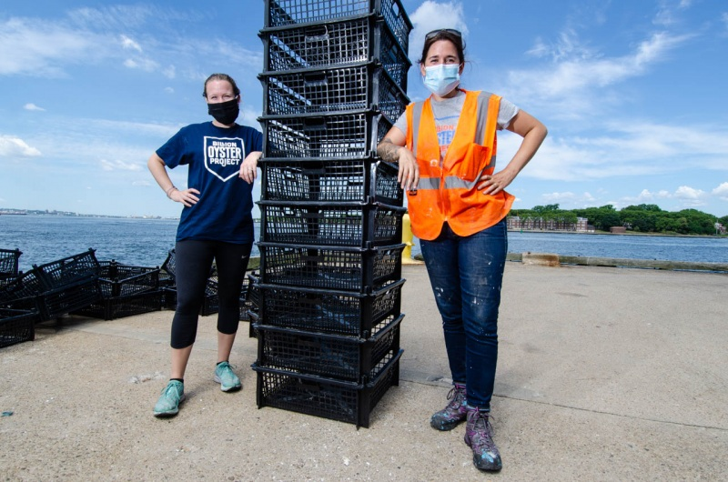 Working at Red Hook Terminal, the Billion Oyster Project crew stacks trays to transfer loose oyster shells collected from restaurants for the Soundview oyster reef restoration project.