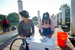 Data recorded by staff at the Bronx River Alliance near the confluence of the Bronx River will be shared with Save the Sound in their larger effort to monitor and report on the health of Long Island Sound.