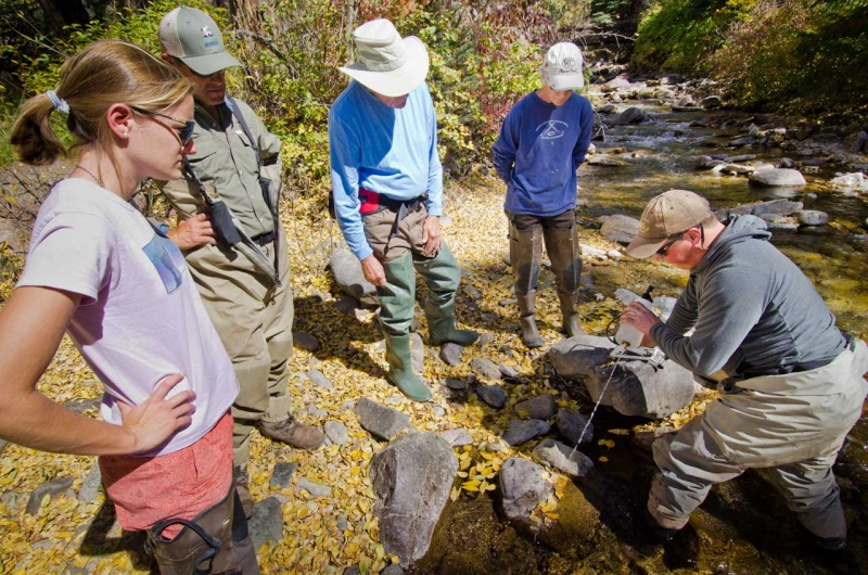 Citizen scientists get a tutorial on collecting eDNA to identify native trout habitat.