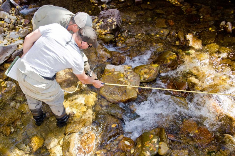 USFS gives a citizen scientist tips for measuring stream pools during a training program to help identify habitat that can support native trout populations.