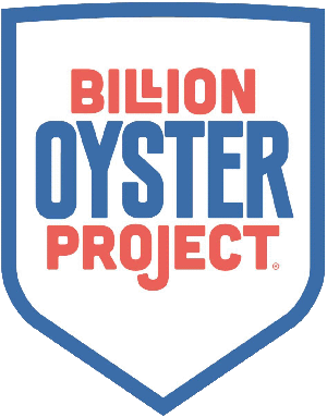 Witness Tree Media partner Billion Oyster Project