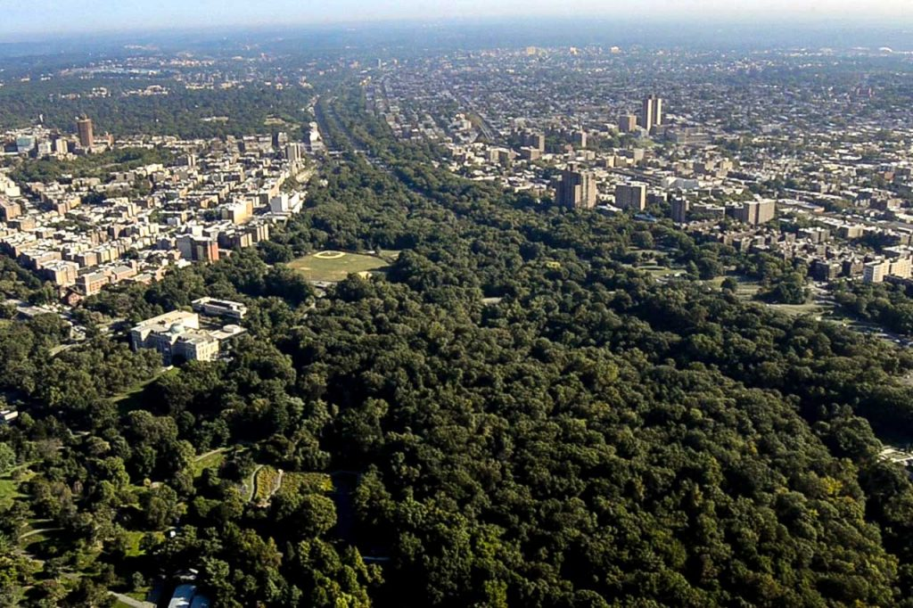 Aerial View of the Bronx River Forest