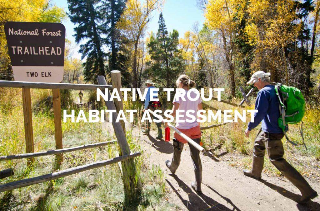 Native Trout Habitat Assessment Gallery