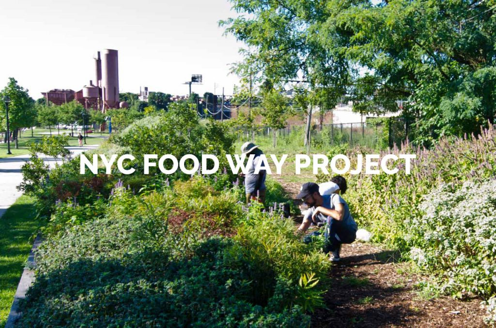 NYC Foodway Project Gallery
