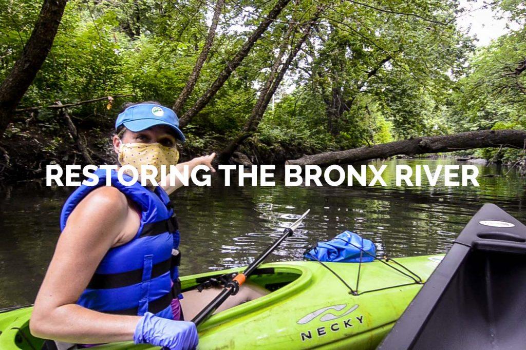 Restoring the Bronx River Gallery