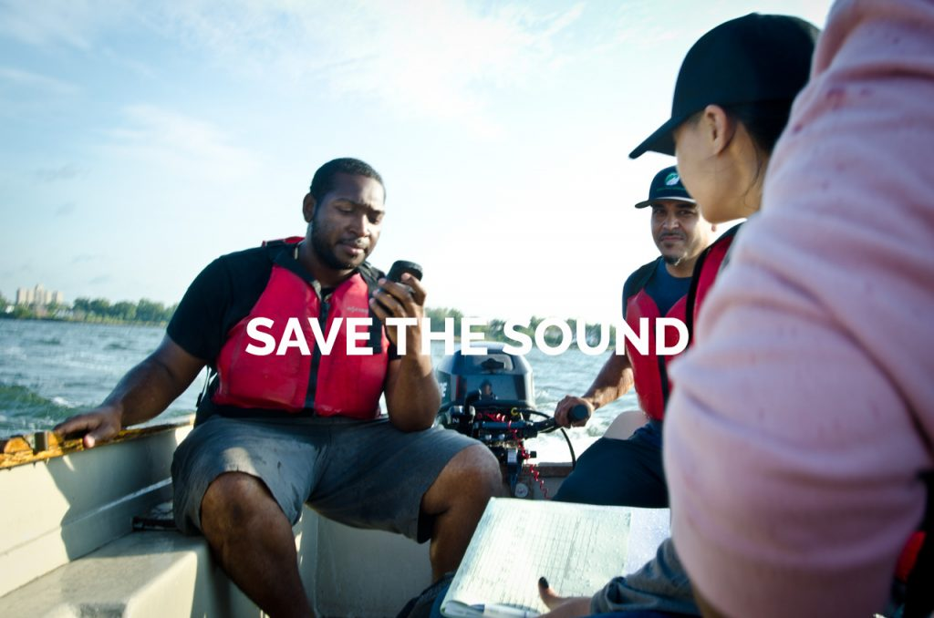 Save the Sound Gallery
